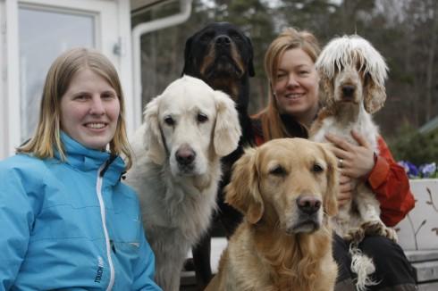 Canis avdelning Göterborg & Kungsbacka