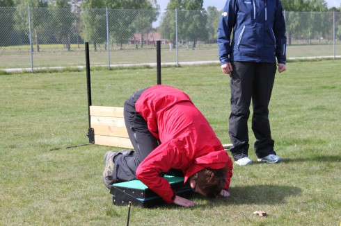Targetträning för agilityhunden: nosduttar förevisade av Anna Larsson ;o).