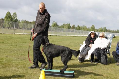 Morten och Kira och plattformen.