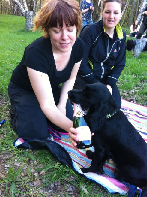 Tassla och champagnen